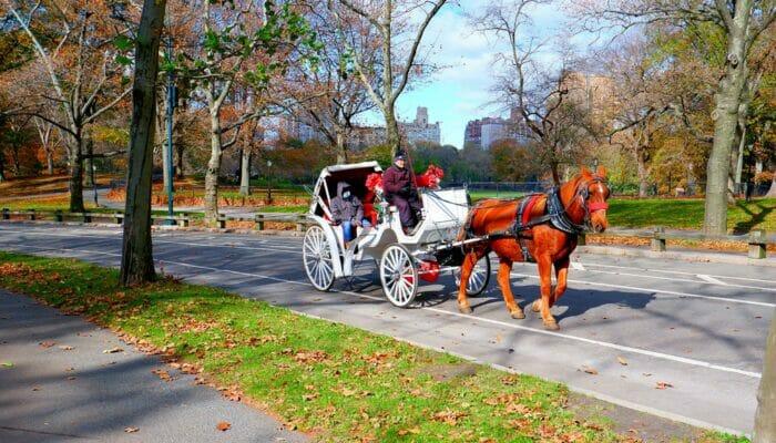 Tour en caleche a Central Park NYC