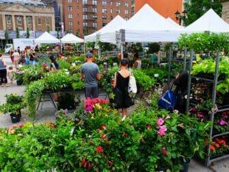 Les marchés de New York - Plants on Union Square