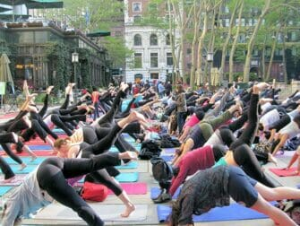 Yoga NYC - Yogi