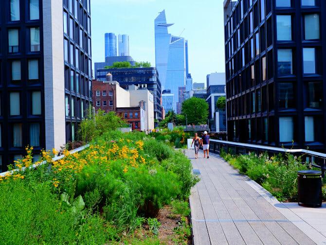 Parcs à New York - L'été à High Line Park