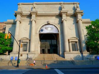 Le Jour de l'An à New York - American Museum of Natural History