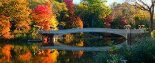 Visite Guidée des Lieux de Tournage à Central Park