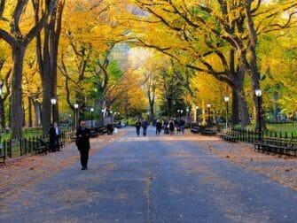 Visite Guidée des Lieux de Tournage à Central Park - The Mall