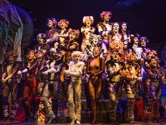 Billets Cats à Broadway - Ensemble