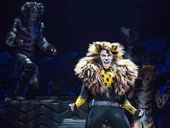 Billets Cats à Broadway- Solo
