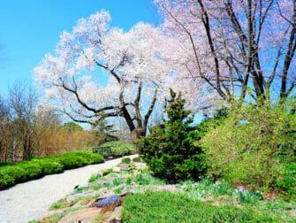 Botanical Gardens a New York New York Botanical Garden dans le Bronx